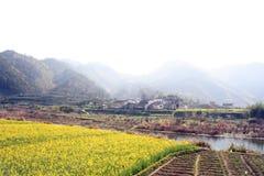 Wuyuan borracho foto de archivo