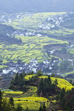 Wuyuan, china: terraced field Stock Photo