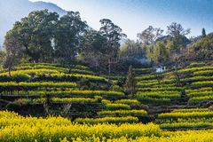 Wuyuan Jiangling scenery Stock Image