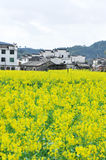 Wuyuan landscape Royalty Free Stock Photography