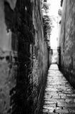 Wuzhen Στοκ Εικόνες