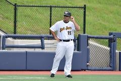WV黑熊棒球-第一个季节 库存图片