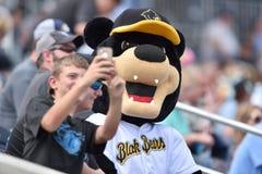 WV de zwarte draagt Honkbal - eerste seizoen Stock Afbeelding