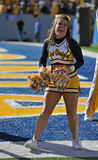 WVU cheerleader Stock Image