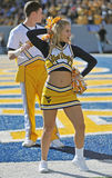 WVU cheerleader Stock Photos