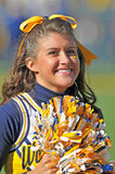 WVU cheerleader - American Football Stock Image