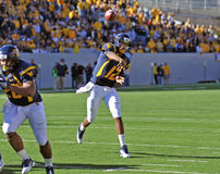 WVU quarterback Geno Smith - touchdown pass Stock Photography