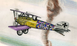 WW1 Albatros DIII Royalty Free Stock Photos