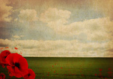 WW1 First World War Abstract Background with Poppies Stock Photos