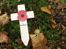 WW1 het Kruis van de herinneringsdag met Papaver stock fotografie