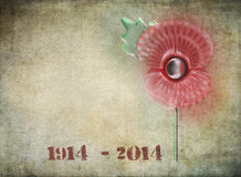 WW1 centenary graffiti. Graffiti style remembrance day poppy on grunge background. Dates on 1914-2014 in stencil style to commemorate the Centenary of World War Vector Illustration