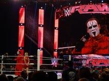 WWE超级明星蜇对人群的举行mic和谈话在采访中 免版税图库摄影