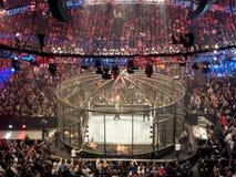 WWE-de Worstelaars worstelen binnen Ring en leggen op het metaal knoeien outs Royalty-vrije Stock Afbeelding