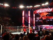 WWE Superstar Sting gives wrestler Bo Dallas scorpion death drop Royalty Free Stock Image