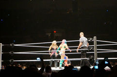 WWE wrestlers Natalya Neidhart vs Asuka in ring Stock Images