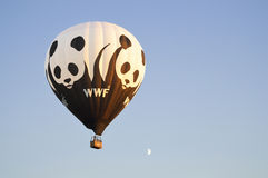 WWF-Ballon royalty-vrije stock fotografie