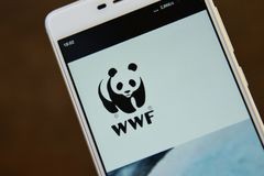WWF logo seen on the smartphone screen. Ivano-Frankivsk, Ukraine - May 9, 2019: World Wide Fund for Nature WWF logo displayed on smartphone stock photo