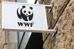 WWF logo on a wall. Hamburg, Germany - July 21, 2017: The World Wide Fund for Nature also called WWF is an international non-governmental organization founded in Stock Photography
