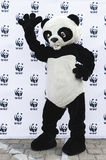 WWF Panda. Man dressed in costume of the panda in the WWF (World Wide Fund for Nature) logo taken on May 17, 2015 in Bucharest, Romania Stock Image