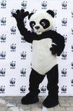 WWF Panda Stock Image