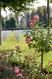 wwi Франции oise кладбища aisne американское стоковая фотография