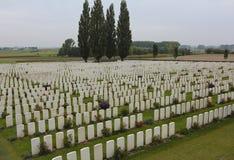 WWI-gravar av modiga brittiska samväldetsoldater royaltyfri foto