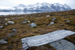 Wooden door - Scoresbysund Fjord - Greenland Royalty Free Stock Image