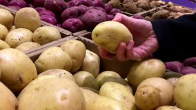 WWoman selecting potato in grocery store stock footage