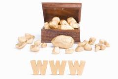 WWW brengt rijkdomconcept Stock Afbeelding
