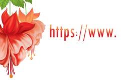 //WWW del HTTP. Fiori Fotografia Stock Libera da Diritti