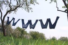 WWW en naturaleza Imágenes de archivo libres de regalías