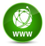 WWW (global network icon) elegant green round button Royalty Free Stock Photography