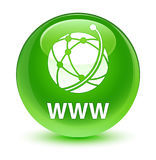 WWW (global network icon) glassy green round button Stock Images