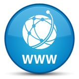 WWW (global network icon) special cyan blue round button Stock Photos