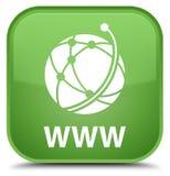 WWW (globalnej sieci ikona) specjalny miękkiej części zieleni kwadrata guzik Obraz Stock