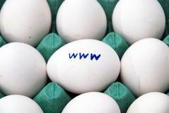 WWW na jajku Obraz Stock