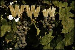 Www winogrona Zdjęcia Stock