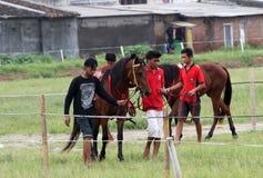wyścig koni przewodów konia trzy zaokrągla się Fotografia Stock