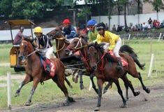 wyścig koni przewodów konia trzy zaokrągla się Zdjęcia Stock