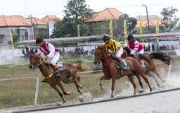 wyścig koni przewodów konia trzy zaokrągla się Zdjęcie Stock