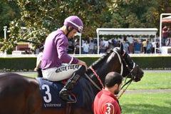 wyścig koni przewodów konia trzy zaokrągla się Zdjęcia Royalty Free