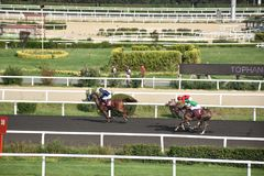 wyścig koni przewodów konia trzy zaokrągla się Obrazy Stock