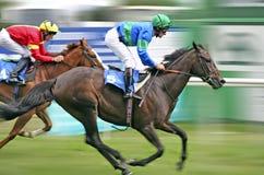 wyścigi konne Zdjęcie Stock