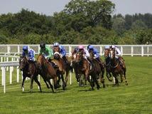 wyścigi konne Zdjęcia Royalty Free