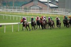 Wyścigi konny obrazy royalty free