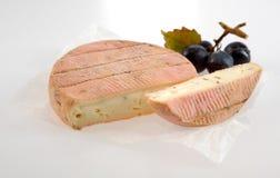 Wyśmienicie śmietankowy miękki aromatyczny Francuski ser obrazy royalty free