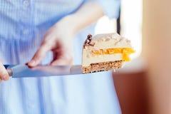 Wyśmienicie śmietankowy tort Zdjęcie Stock