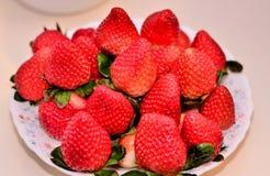 Wyśmienicie świeży truskawkowy naczynie Fotografia Stock