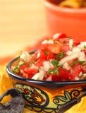 Wyśmienicie świezi Pico De Gallo układy scaleni i salsa Obraz Royalty Free