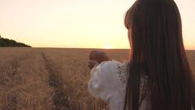 Wyśmienicie chleb na palmach młoda kobieta bochenek chleb w rękach dziewczyna nad pszenicznym polem w promieniach zmierzch zako?c zbiory wideo